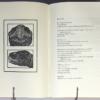Tortoises | D. H. Lawrence