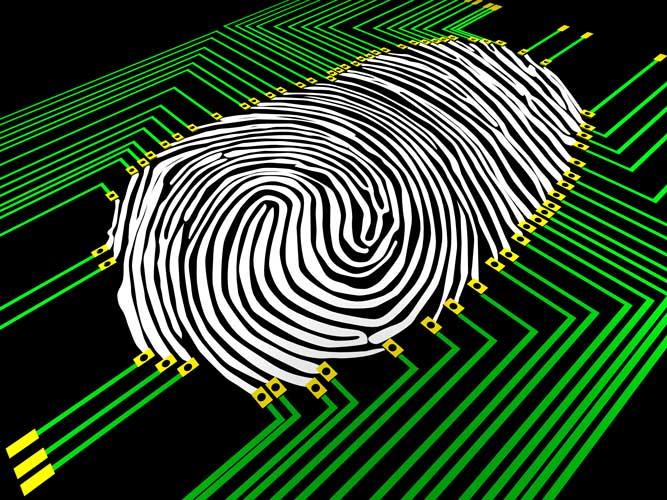 Fast Fingerprinting