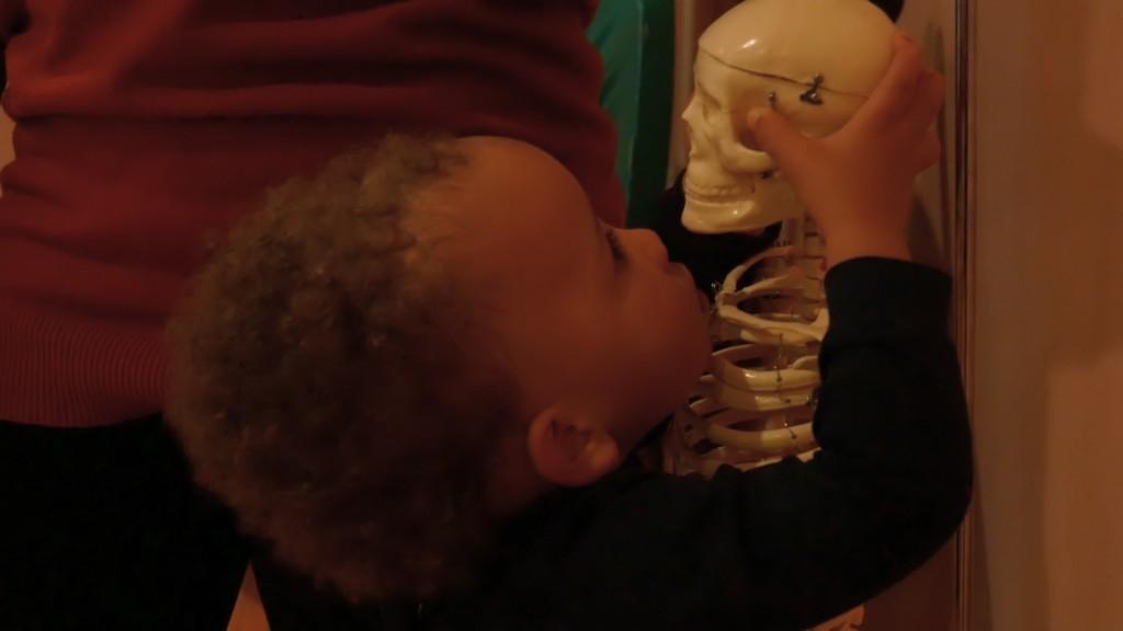 MySkeleton