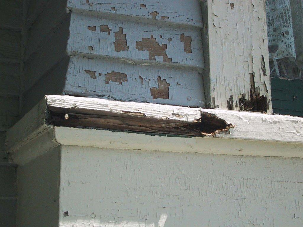 Rotten Wood Repair