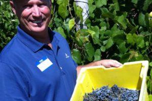 Southern Vines Winery & Tasting Room