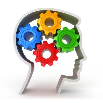 Train Your Business Brain