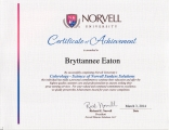 <h5>Norvell Colorology Certification</h5>
