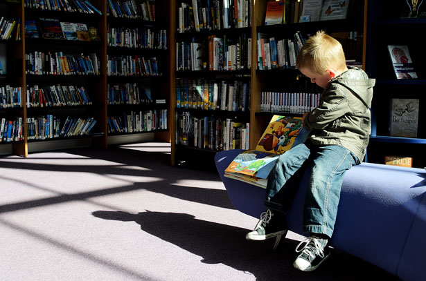 Pelican Family Series Children's Picture Books blog post on choices Boy Reading In Library