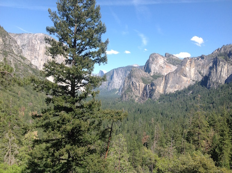 #22 — Experience Nature's Peace — The National Parks