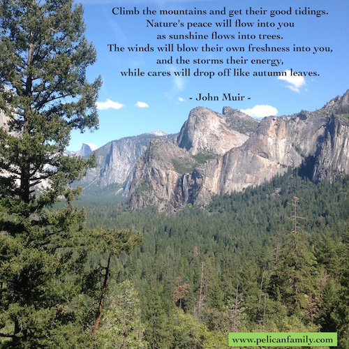 Pelican Family Series Children's Pciture Books Yosemite National Parks Featured Image