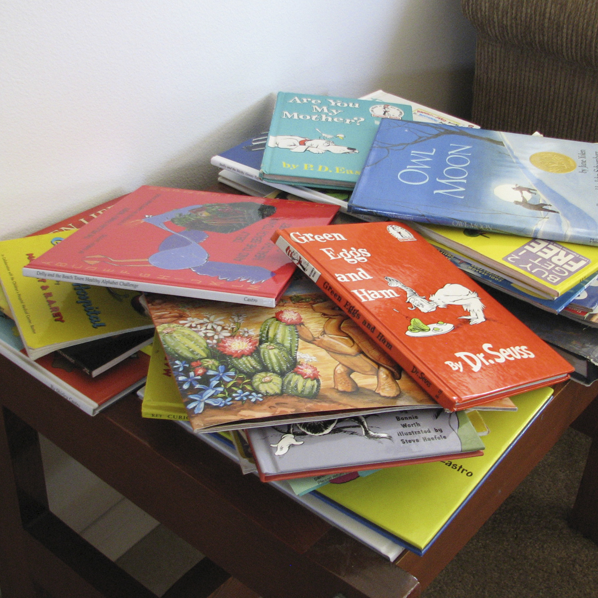 Pelican Family Series Children's Picture Books Blog Post 28 create a reader friendly home books on a table