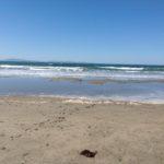 sandcastle building beach