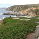 beach below cliff