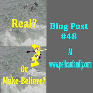 Real Or Make-Believe