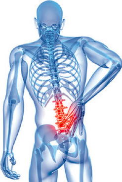 Low Back Pain – Myths Debunked