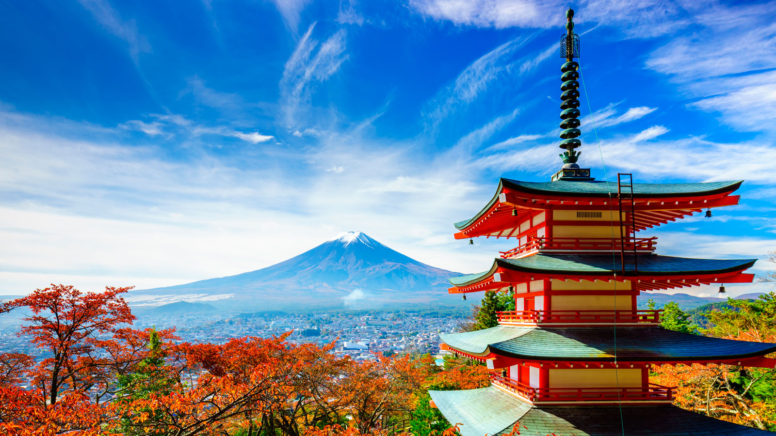 Learn Japanese at ILI