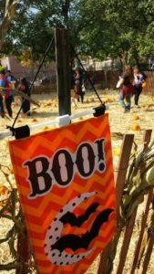 Shocktoberfest in Flushing Meadows Corona Park @ Shocktoberfest | New York | United States