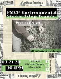 Meadow Lake Restoration: Pruning Project @ Flushing Meadows Corona Park - Meadow Lake | New York | United States