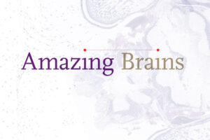 Amazing Brains: A Virtual Art Exhibit @ New York Hall of Science | New York | United States