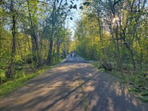 Virtual Walking Tour: The Vanderbilt Motor Parkway @ Online | New York | United States