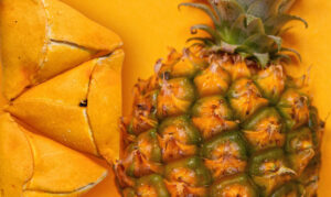 The Art of Guyanese Pine Tart: a Panache of Flavors @ Online   New York   United States