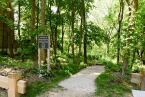Summer Solstice Walk @ Alley Pond Environmental Center | New York | United States
