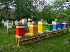Pride on the Farm @ Queens County Farm Museum | New York | United States