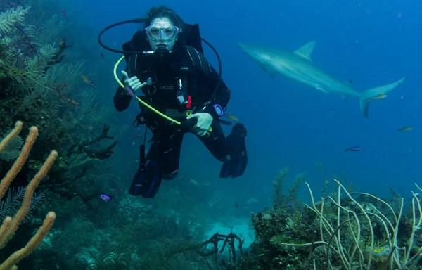 SCUBA Network diving trip