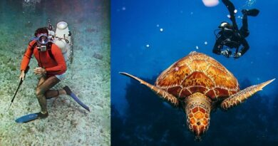 Summer of Adventure SCUBA Diving
