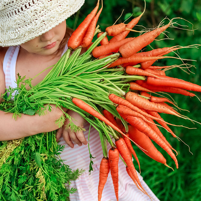 Girl with a bunch of freshly clean carrots