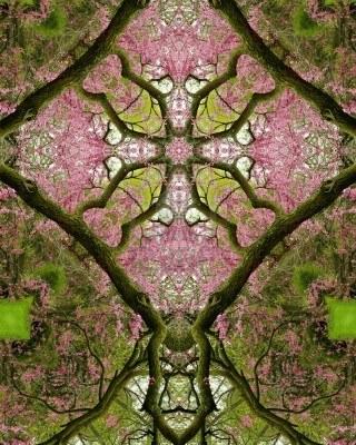 kaleidoscope tree and flower image