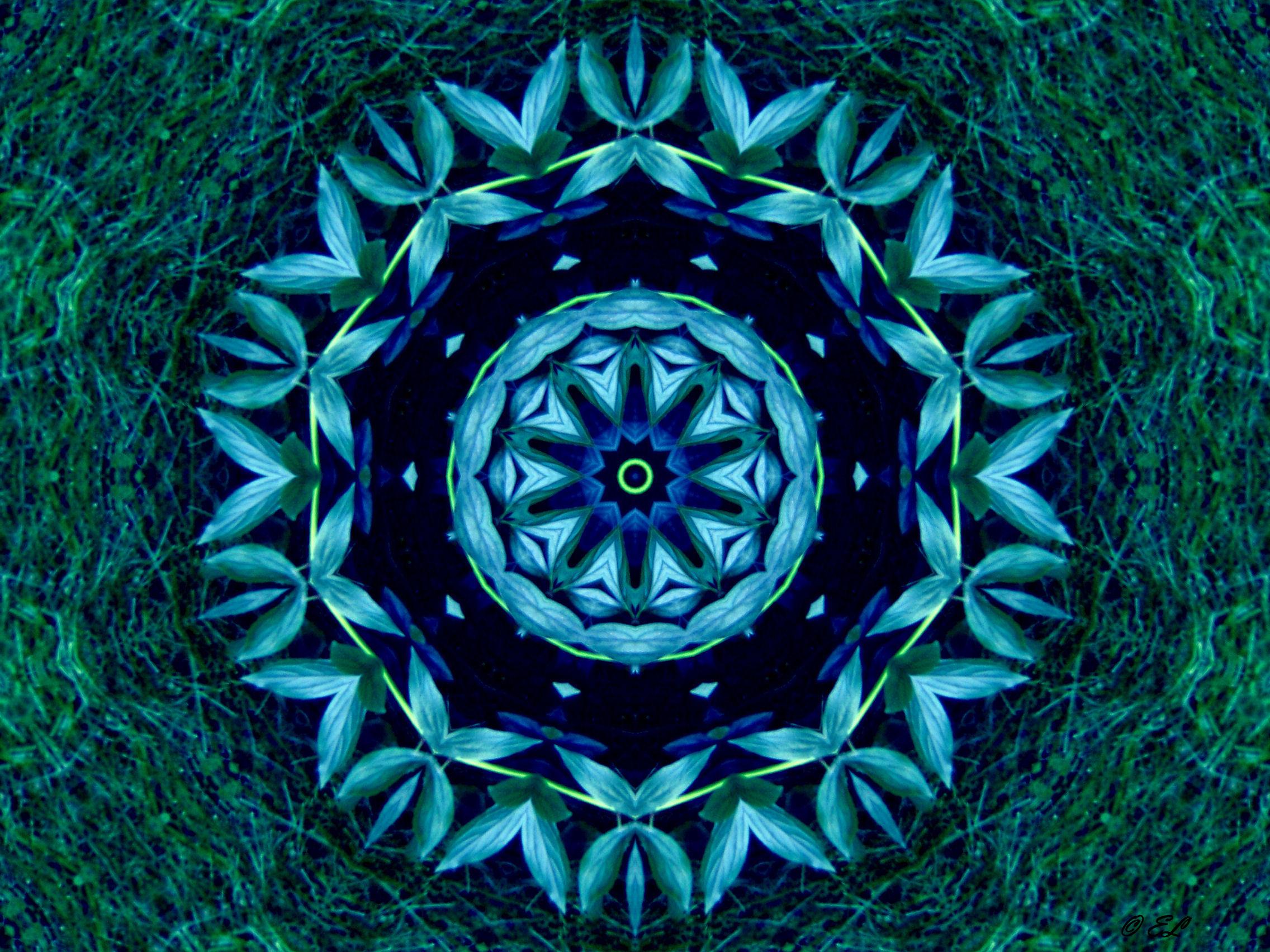 blue flower mandala image