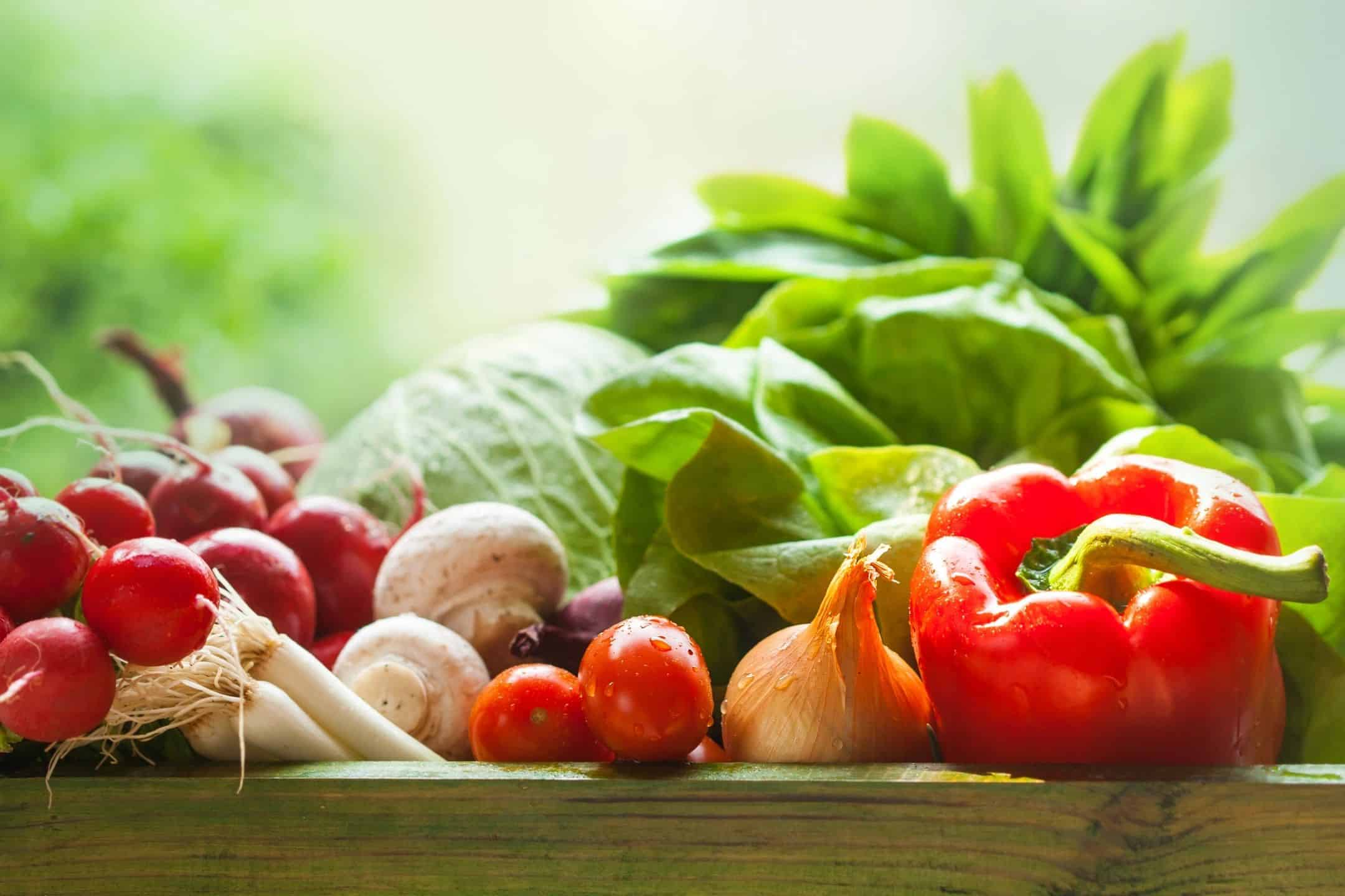 Healthy Nutrition Base On Science