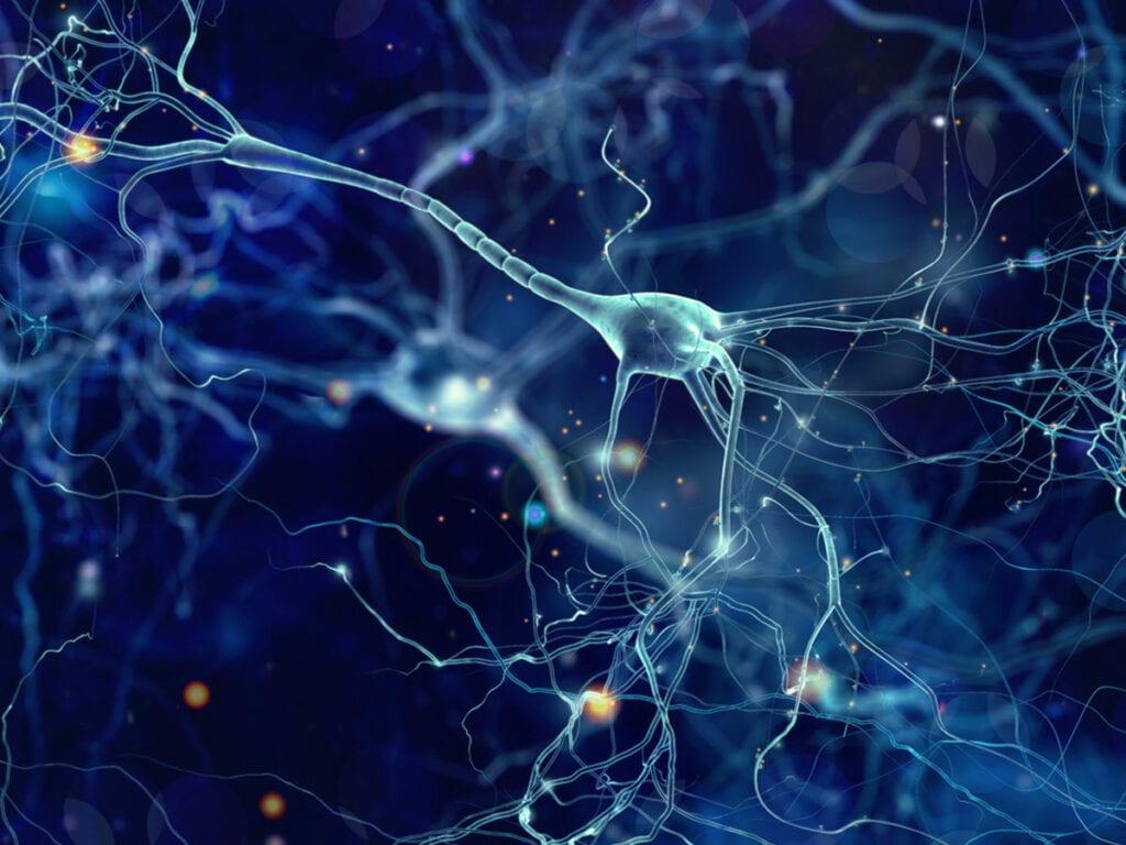 Neuropathways of Addiction
