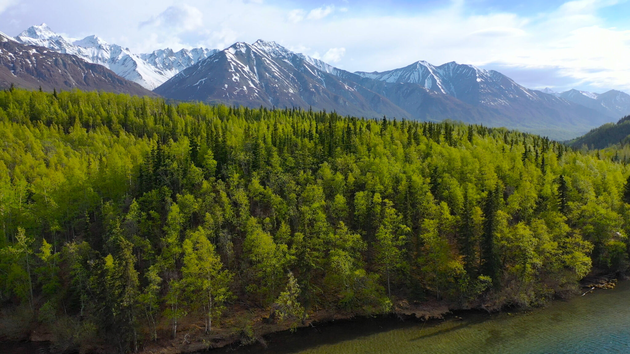 Nature In Alaska