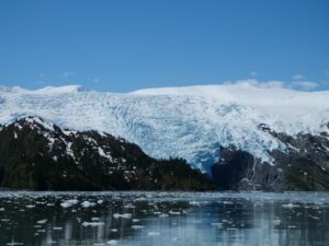 Whales and Glaciers