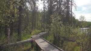 Outdoor Recreation Anchorage