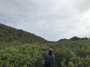 Hiking in Glacier View
