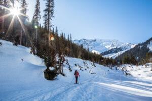 skier sun snow