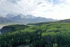 trees mountains Alaska