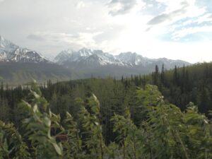 Alaska double exposure