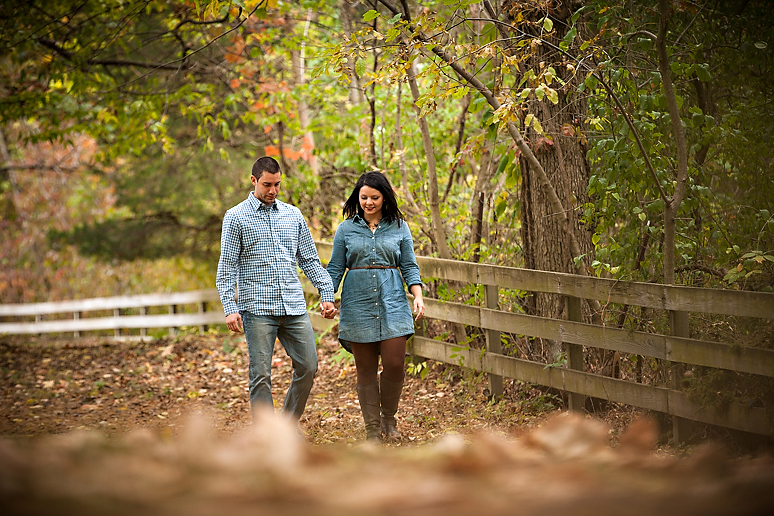 Starved Rock IL Engagement Photos