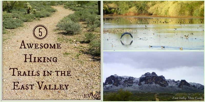 Five Awesome Hiking Trails in the East Valley