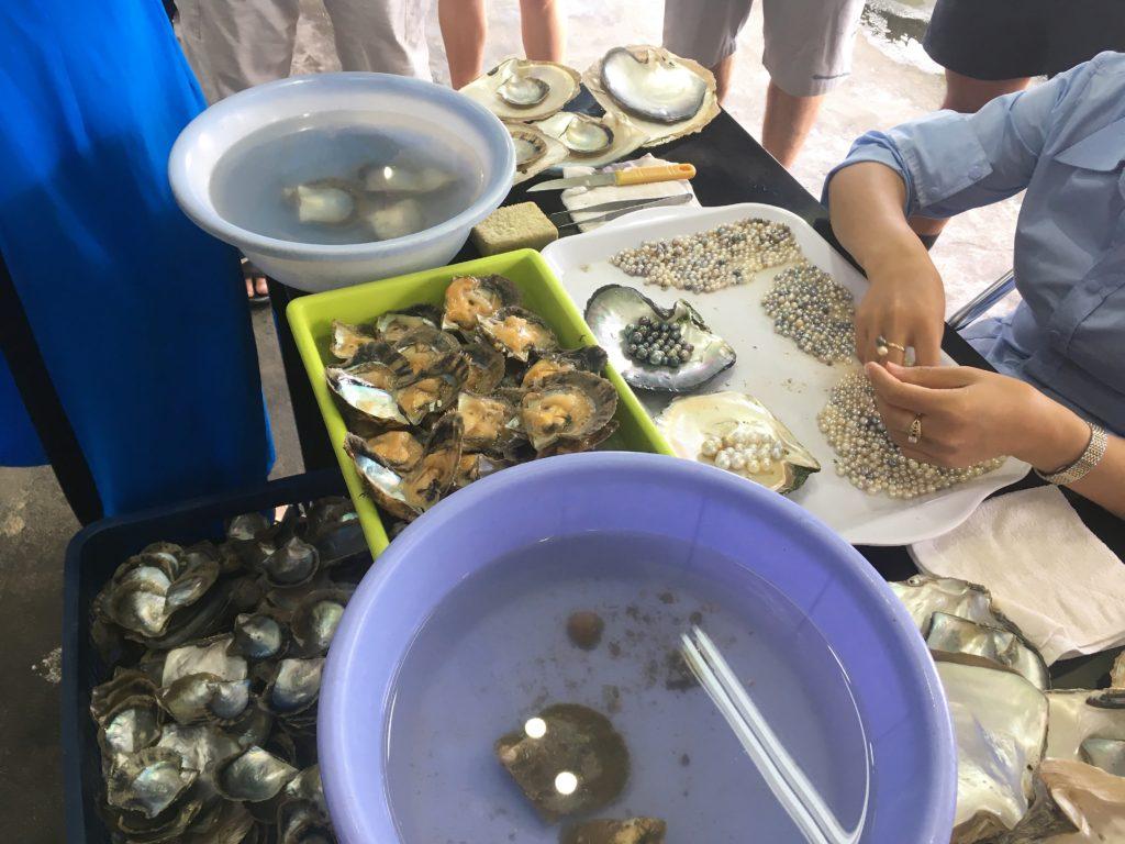 halong bay cruise, ha long bay, pearls, oysters, vietnam