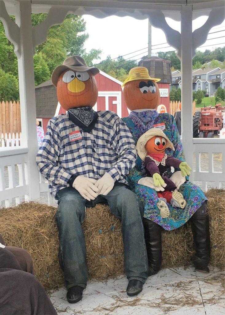 pumpkintown, pumpkin, fall, connecticut, central connecticut