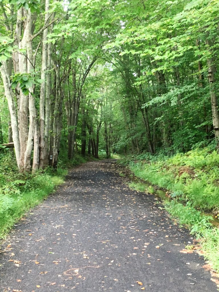 airline trail, old airline trail, rail trail, connecticut, hiking, walking, biking, outdoors, central connecticut