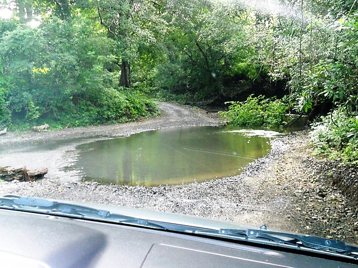 costa rica, driving, jungle, puddle