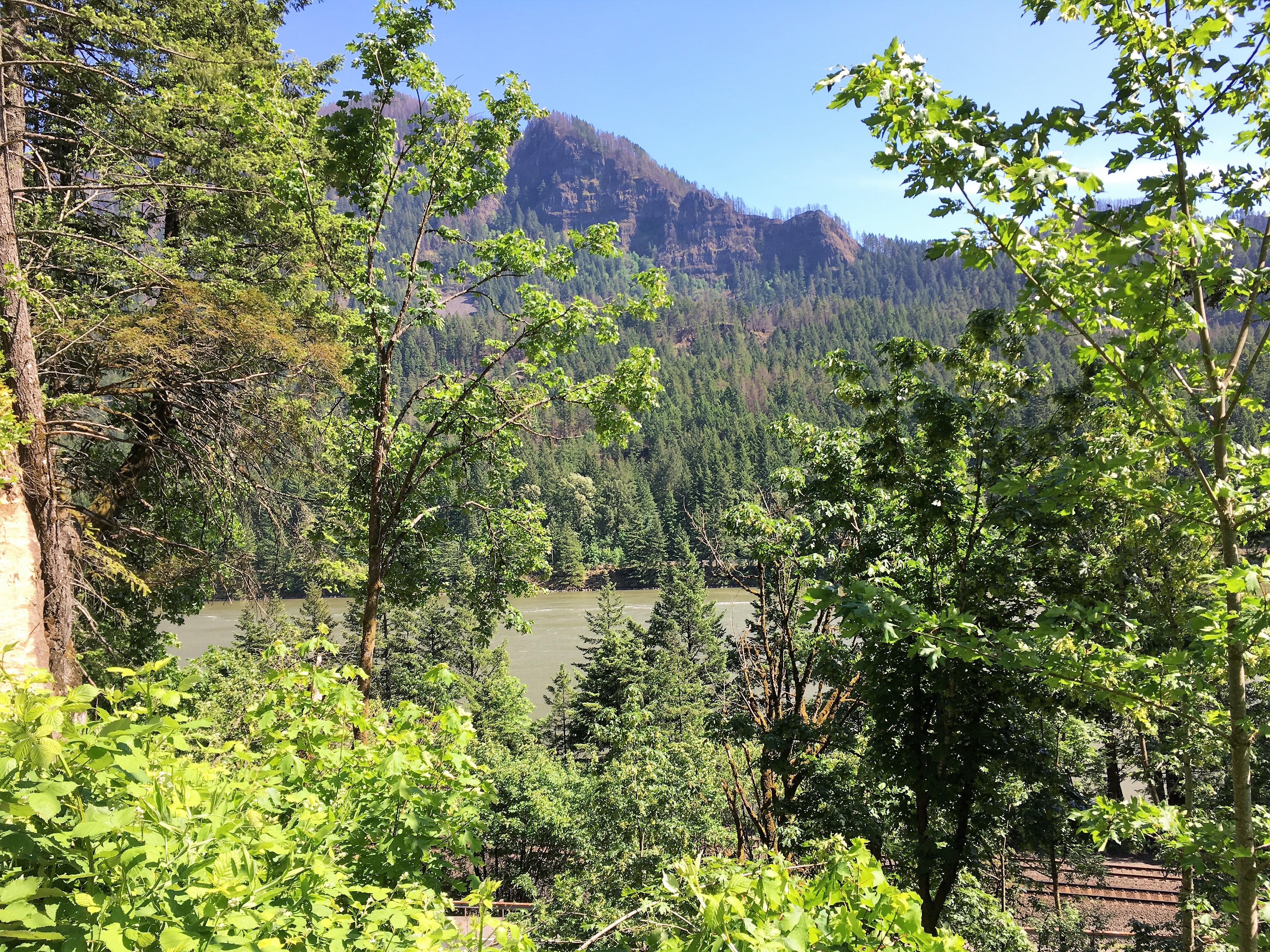 portland; oregon; hiking; columbia river gorge