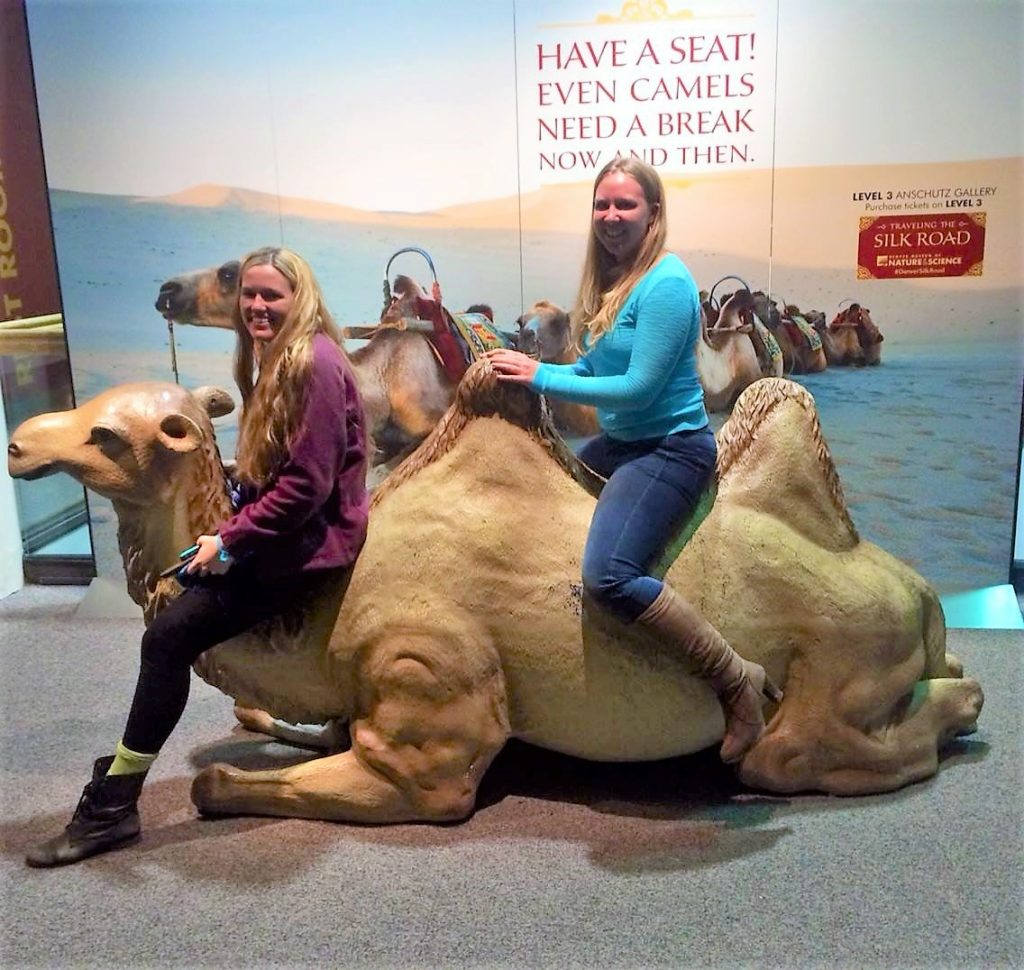 what to do in denver; museum of science; museum of nature and science; museum; downtown denver