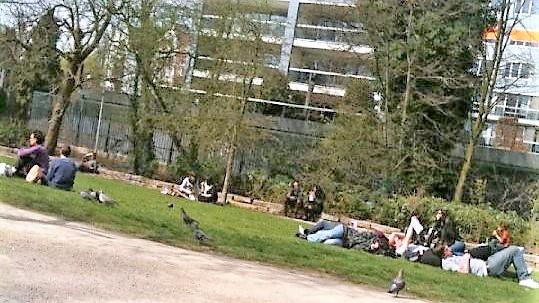 amsterdam; netherlands; holland; top 20; vondelpark
