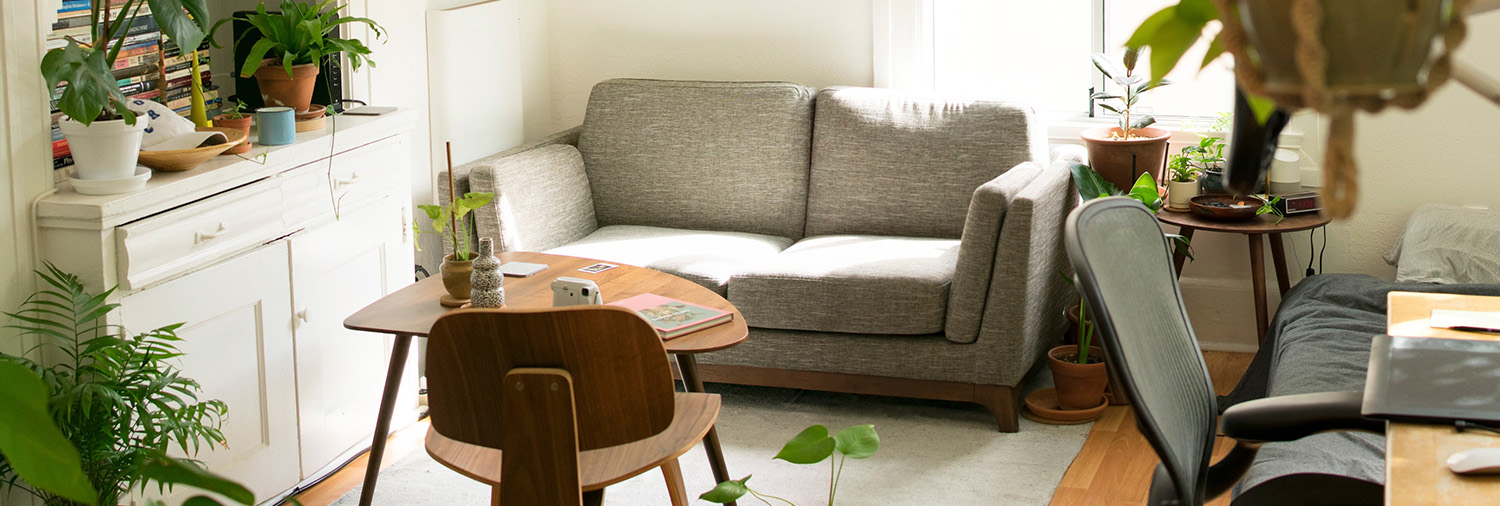 Hipster young professional apartment with plants and couch