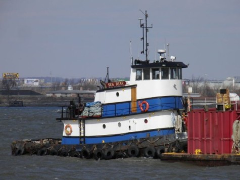 "Photo of the ""Sea Bear"" by Shipspotting.Com"