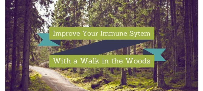 Improving Your Immune System is as Easy as a Walk in the Woods