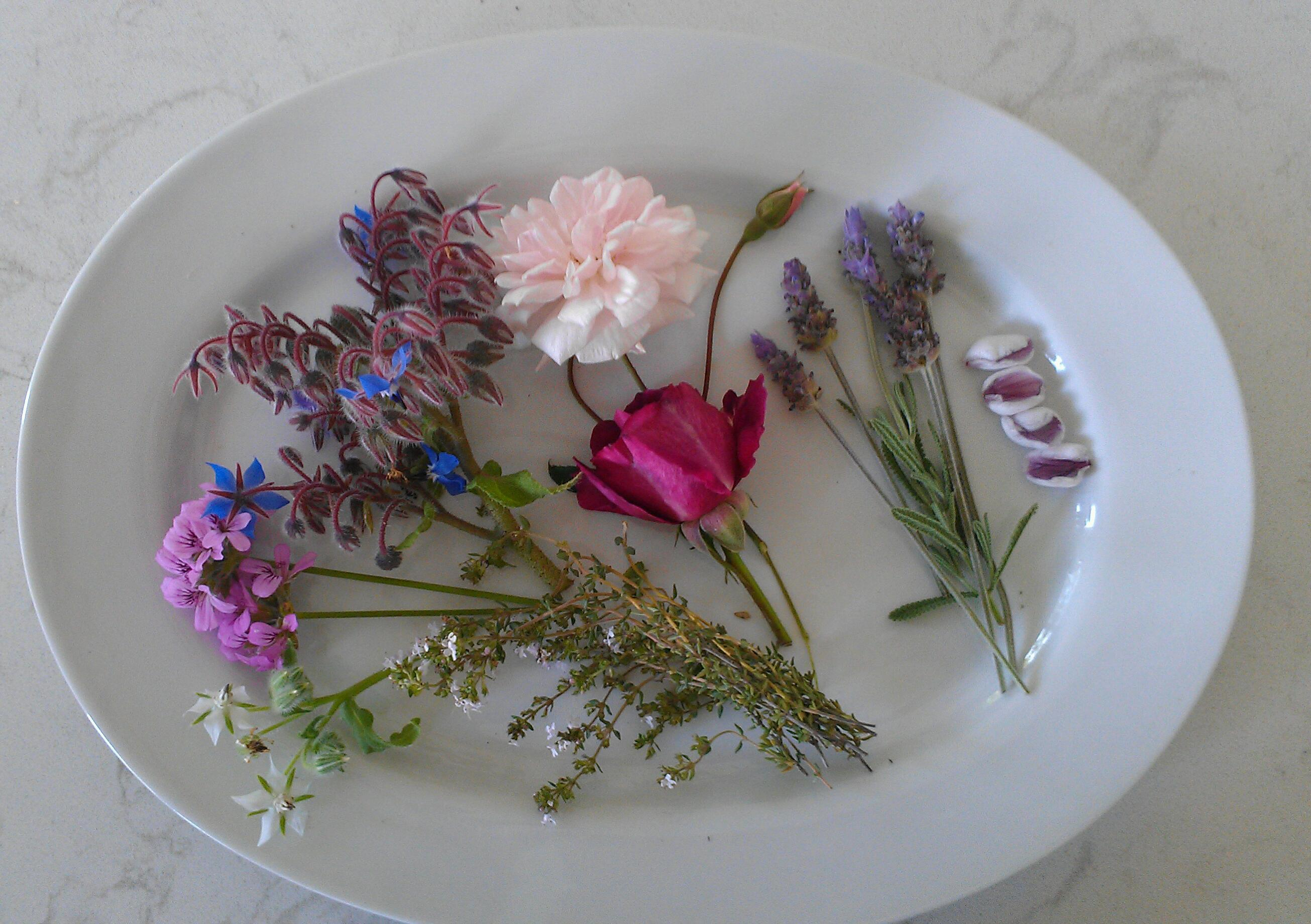 Jazz Up Your Cooking with Healthy and Tasty Edible Flowers